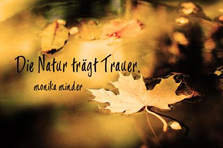 Herbst Gedichte Und Sprüche