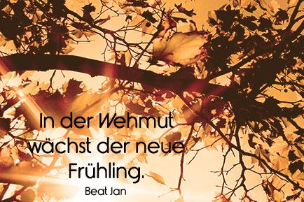 Herbst Gedichte Und Spruche